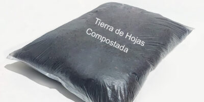 Tierra de Hojas en Iquique